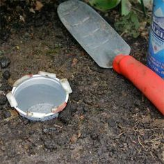 10 Uses for Yogurt Cups…. drown those naughty slugs who put holes in the leaves of your plants! THIS really works!!! but u have to refill on a regular basis! I've killed a lot of slugs this year! They love the beer best!