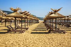 Beach In Golden Sands. Bulgaria Stock Image - Image of parasol, seaside: 51974879 Brochure Design Inspiration, Morning Sunrise, More Pictures, Bulgaria, Seaside, Countryside, Gazebo, Tours, Outdoor Structures