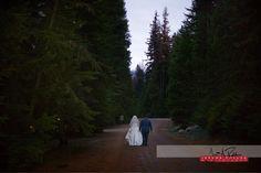 Jen and Jake take a walk among the trees to their reception.   #wedding #idaho #idahowedding #trees #brideandgroom