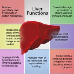 WebQuest: LIVER DISEASE – Understanding the disease, common signs and symptoms, and your role as a Nurse: created with Zunal WebQuest Maker Detox Your Liver, Detox Your Body, Liver Cleanse, Cleanse Diet, Cleanse Recipes, Liver Detoxification, Kidney Cleanse, Hormon Yoga, Nursing School Notes