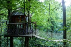 Auvergne Treehouse. A cozy treehouse with a hanging bridge which leads to the observation deck. The interior is colourful and gets a lot of daylight through the huge windows. Located in Auvergne, France. [[MORE]]
