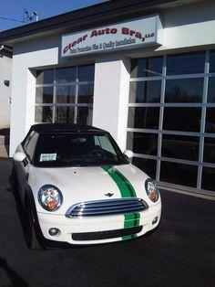 Mini  Cooper custom stripe @ ClearAutoBra.com