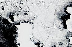 Iceberg B31 separates from Antarctica's Pine Island Glacier and heads toward the Amundsen Sea, 2014. [NASA]