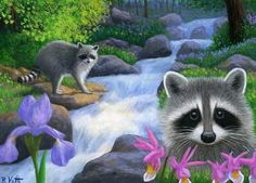 Raccoons mountain stream spring flowers landscape limited edition aceo print art #Realism by Bridget Voth Ebay ID star-filled-sky