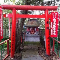 Japan, Spaces, Park, Parks