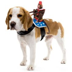 Dog Riders Pet Costumes | Pet | Gear