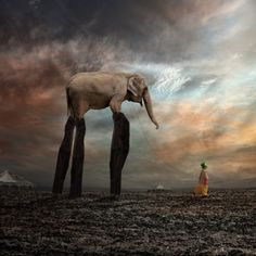Surreal Photography by Caras Ionut | 123 Inspiration