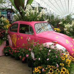 Old VW Bug At Petitti Garden Center in Avon, OH. I had to post this!