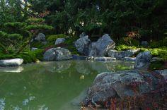 in Zusammenarbeit mit der Firma KOKENIWA gestalteten wir in Gießen  einen Moosgarten mit Teich und Wasserfall Golf Courses, Beautiful, Beautiful Images, Garden Art, Water Pond, Waterfall, Culture