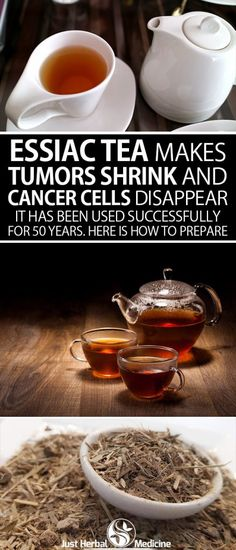 Essiac tea makes tumors shrink and cancer cells disappear. It has been used successfully for 50 years. Here is how to prepare it