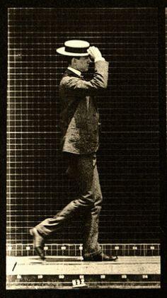 Animal Locomotion, Vol. 7 (1872-1885) - Eadweard Muybridge, photographer.