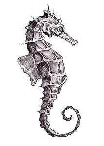 seahorse sketch - Bing images