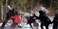 Nine people flee #US. border patrol to seek #asylum in #Canada