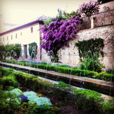 La Alhambra, Granada , Spain.  Garden