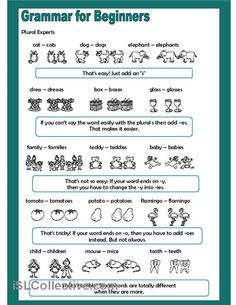 Grammar for Beginners - Plural Experts worksheet - Free ESL printable worksheets made by teachers