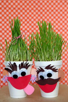 The temperature is well above 100 here in Vegas, so it's always nice to stay indoors and do a little crafting with the kids. Today we want to share an idea that the kids can make and care for…  for the rest of the summer! Let us introduce you to… Hairy Harry and Hairy Harriet …