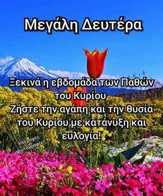 Orthodox Easter, Greek Easter, Beautiful Pink Roses, Greek Quotes, Christian Faith, Wish, Beautiful Pictures, In This Moment, Sayings