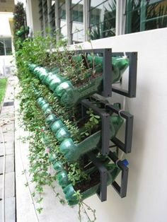 Jardim vertical com garrafa PET - Diversas ideias | Como fazer em casa
