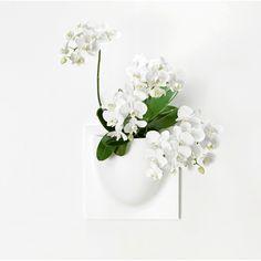 VertiPlants - Veggkrukke - Hvit