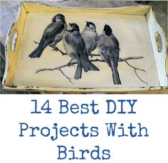 Today I've rounded up 14 of the Best DIY Projects With Birds! All of these pretty crafts and projects were created using Vintage Graphics from my site.