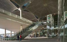 Queen Alia International Airport | Foster + Partners