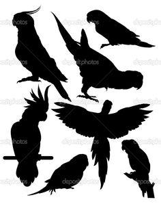 Силуэты Векторный попугаев — Векторное изображение © YurikswO ...