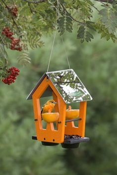 Reflective Oriole Fruit & Jelly Feeder.  Brand NEW and available only at Duncraft.com. #Orioles #Birds