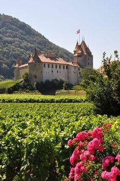 Aigle (Canton de Vaud) , Switzerland