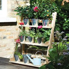 I love these 'ladders'. A splash of colour in a small area, or a neat herb garden.