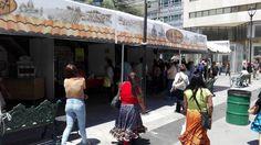 Disfrutan chihuahuenses de Villa Gourmet en Plaza de Armas | El Puntero