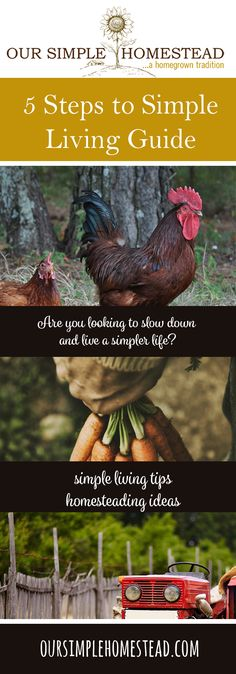 5 Steps to Simple Living - Are you looking to slow down and live a simpler life? Do you feel like the world is closing in around you, and you want to hide and find a place where you can be alone?  That was us six years ago!