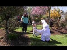 Bauman Farms Easter Egg Hunt Gervais Oregon