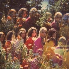 "thee70s: ""its like a bouquet of flowers // 1970s """