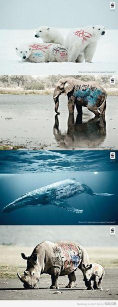Protect, cherish and respect #wildlife