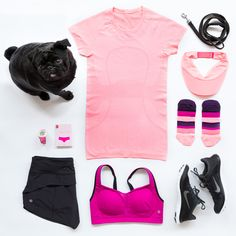 Our favourite accessories to support your summer run. *pug not included.