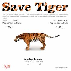 Jai Baghesur is an endeavor to save the magnificent #Tigers in Madhya Pradesh.