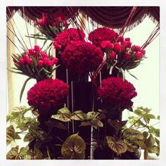 Stunning Red flower arrangement @Four Seasons Hotel Cairo at the First Residence