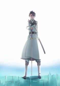 Anime Bleach Toshiro Hytsugaya,Quincy Form,Bleach Manga