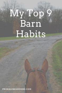 My top 9 barn habits. http://www.proequinegrooms.com/blog/my-blog/my-top-9-barn-habits/