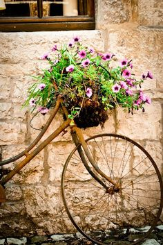 Rusty, crusty bicycle with flowers.