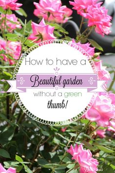 Do you have green thumb envy? me too! However, I have found ways around it, learned a few simple tips and tricks along the way. I guarantee, you just may have the cutest garden on the block this season. #sponsored