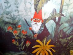 $39.99 obo Rien Poortvliet Gnome de Bloom  Collector Plate Summer Gnomes Four Seasons