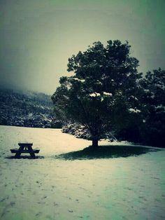 New zealand winter ⛄