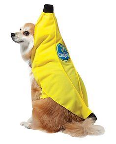 Chiquita Banana Dog Costume - Spirithalloween.com
