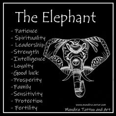 elephant tattoos meaning / elephant tattoos ` elephant tattoos small ` elephant tattoos mother daughter ` elephant tattoos meaning ` elephant tattoos with flowers ` elephant tattoos for women ` elephant tattoos sleeve ` elephant tattoos men Elephant Spirit Animal, Elephant Quotes, Elephant Love, Elephant Art, My Spirit Animal, Small Elephant, Elephant Symbolism, Elephant Tattoo Meaning, Animal Symbolism