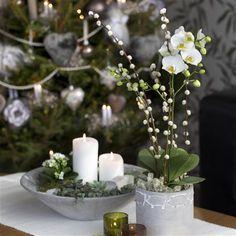 Spara dina julblommor | Blomsterlandet.se Drömhem & Trägård gillar!