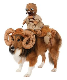 It's a Cool Star Wars Bantha Rider Pet Costume. Sensational ideas of Star Wars Pet Costumes for Halloween at PartyBell. Pet Halloween Costumes, Pet Costumes, Dog Halloween, Costume Ideas, Large Dog Costumes, Halloween Halloween, Costumes 2015, Trendy Halloween, Halloween Parties
