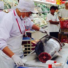 Atum  まぐろ #sea #seafood #atun #atum #peixe #sashimi #japanesefood #giappone #delish #delish #expert #kaiseki #global_family #global_hotshotz #photo #amasing #amomuitotudoisso  #delicious #delícia by rosa_japan
