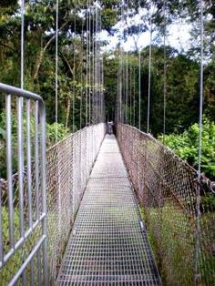 Arenal Hanging Bridges (from post: Which Costa Rica Hanging Bridges Are The Best? Comparing 4 Popular Hanging Bridge Sites in Arenal and Monteverde)