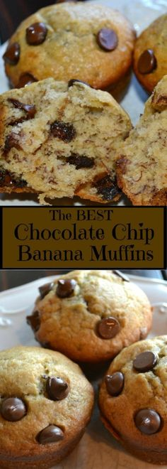 These chocolate chip banana muffins are so moist and delicious. It is the best banana bread recipe Chocolate Chip Banana Muffins - Chocolate Chip Banana Muffins ~ The Frugal Sisters Muffins Chocolate Chip, Banana Bread Muffins, Best Banana Bread, Healthy Banana Bread, Chocolate Chip Recipes, Banana Bread Recipes, Best Chocolate, Homemade Chocolate, Choc Chip Banana Bread